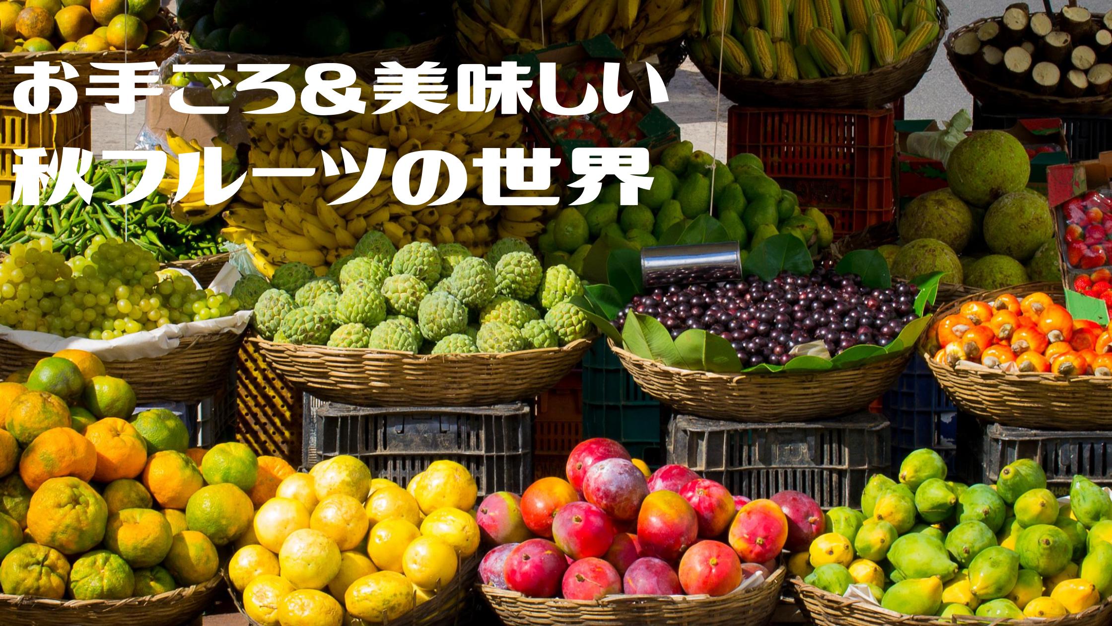 【マツコの知らない世界】栄養満点!秋フルーツの世界