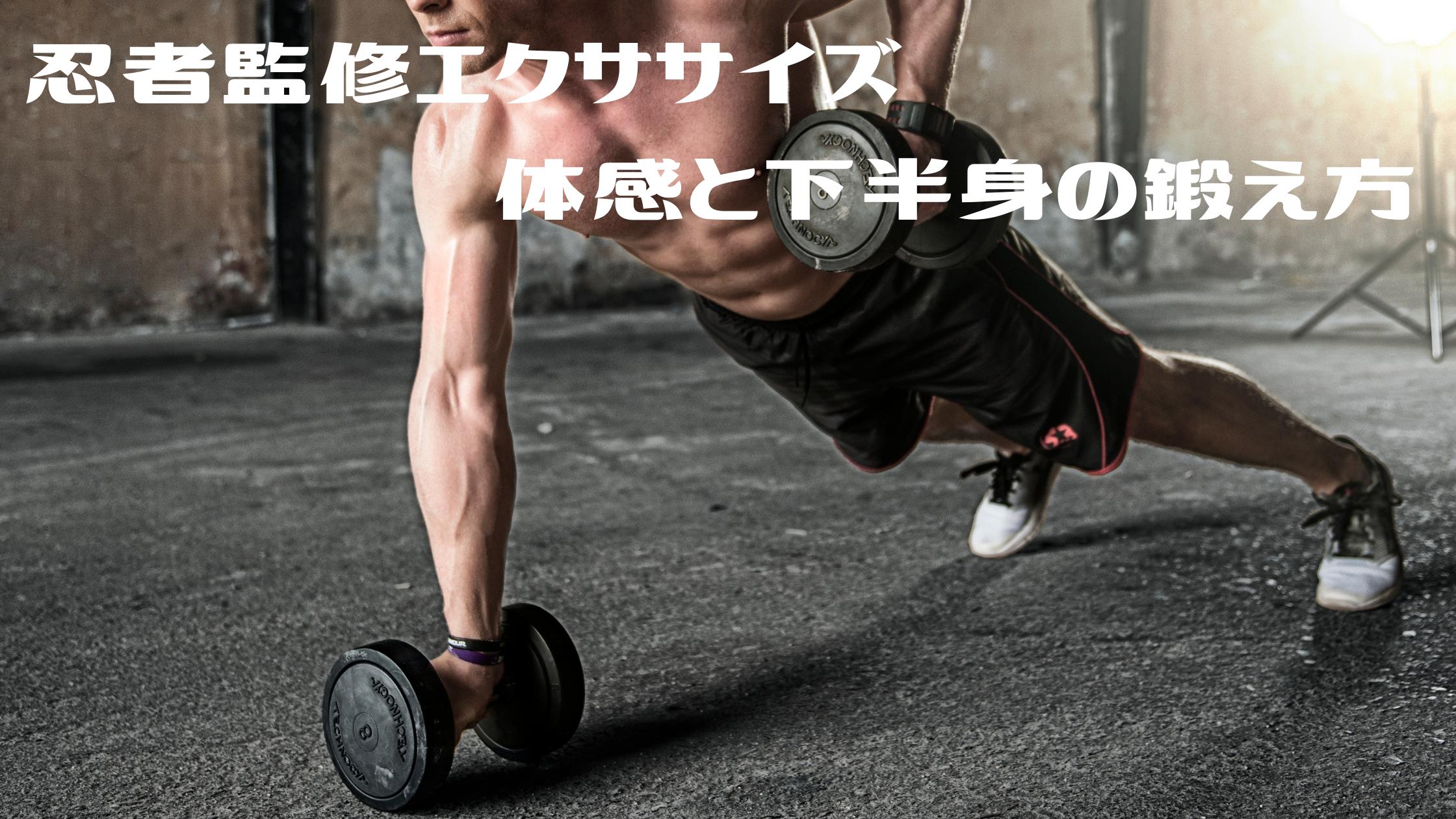 【シューイチ】 忍者監修エクササイズグッズ【体感と下半身の鍛え方】