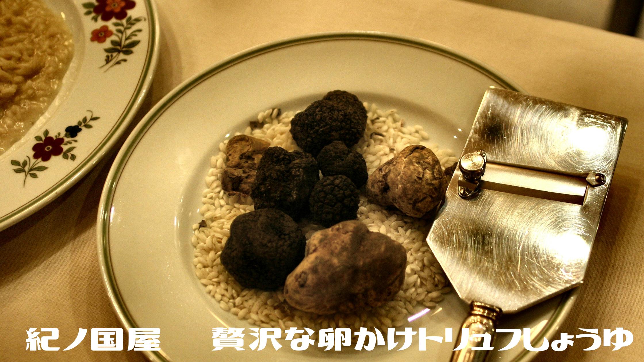 【メレンゲの気持ち】森 七菜さん激推し『紀ノ国屋 贅沢な卵かけトリュフしょうゆ』