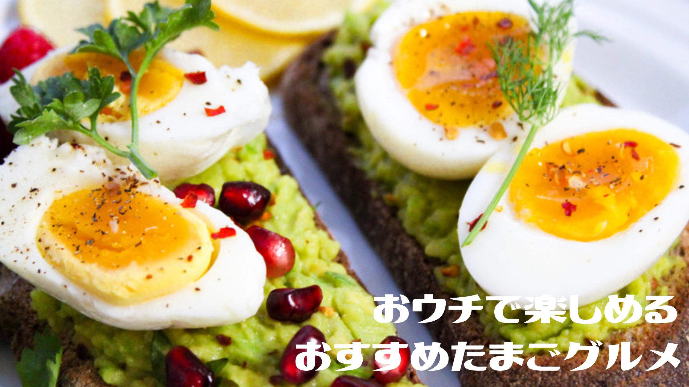 【たまごグルメ】『イカと卵の絶妙コラボ』『濃厚で甘いタマンゴ』『竹鶏のくんたま』おつまみからデザートまで人気のたまごグルメ