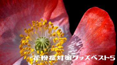 【花粉症対策グッズ】『鼻マスク』『マジカルカバー』『ナノキャッチフィルター』ベスト5