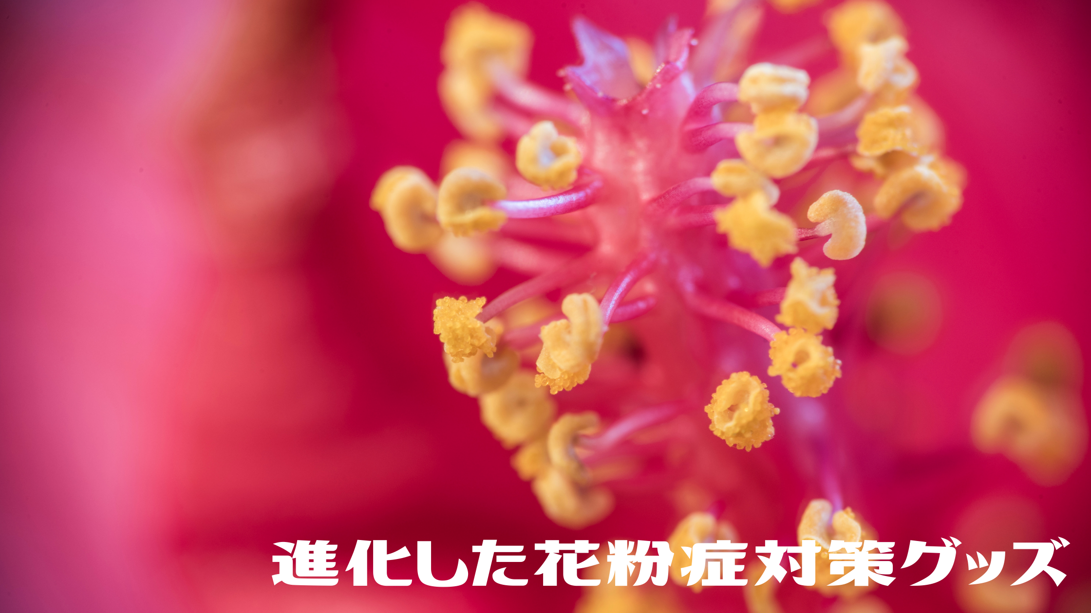 【花粉の季節】つらい洗濯物干しもこれがあれば大丈夫! ファン付きの驚きアイテム