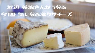 浜辺 美波さんが今1番 気になる 世界最高峰の【激クサチーズ】