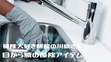 掃除大好き麒麟の川島さんリクエスト!目利きの店主 厳選!【目から鱗の掃除グッズ】