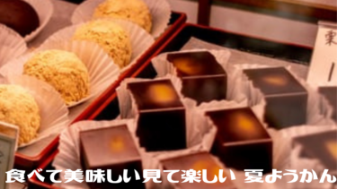 新感覚!食べて美味しい見て楽しい【夏ようかん】