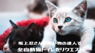 坂上忍さんが買い物の達人に挑戦!全自動猫トイレをリクエスト